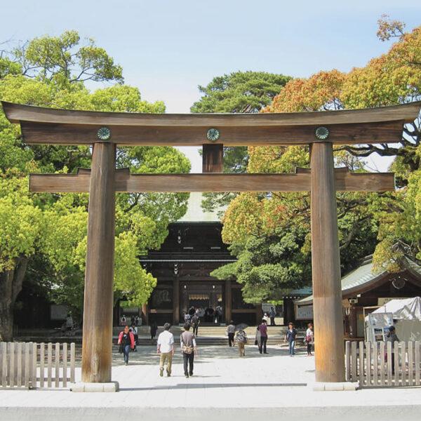 viaggi-japan-in-giappone-in-libertà