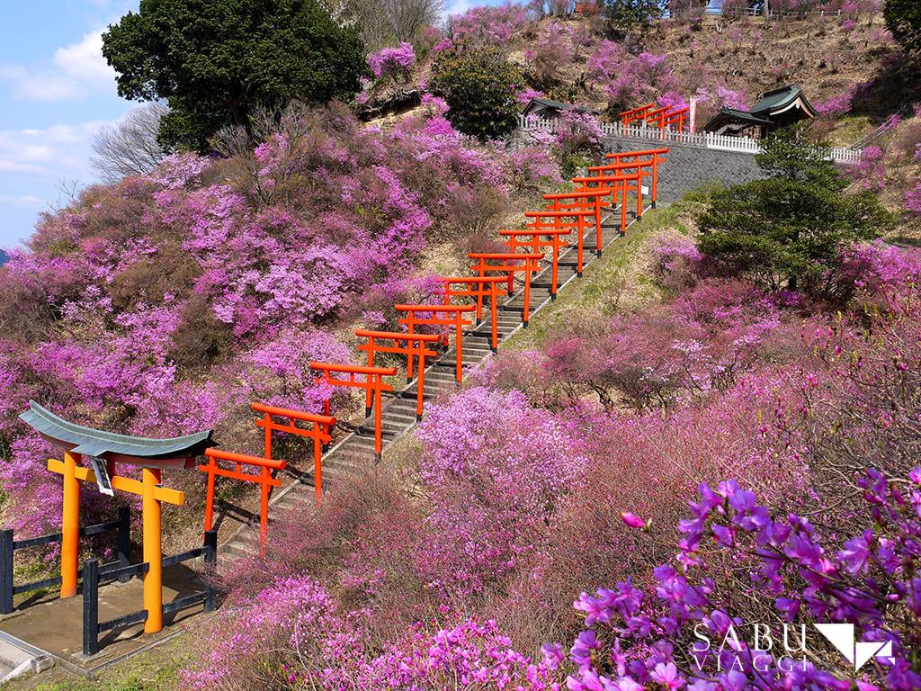 giappone-santuario-shiizaki-tour-operator-sabu-viaggi