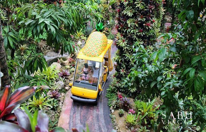 nago pineapple park okinawa