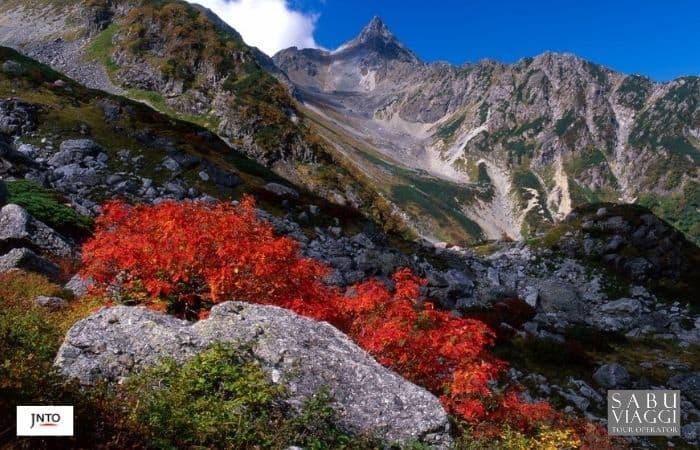 m_163595 Nagano Japan Alps