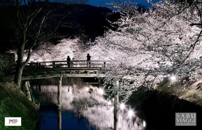 m_163651 Matsumoto Castle