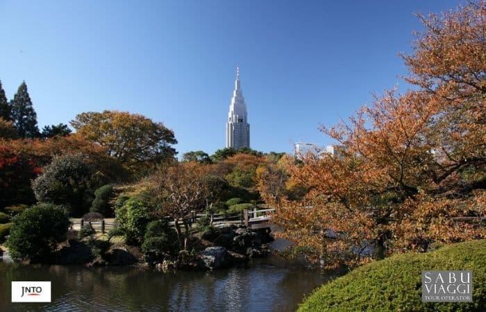 m_164905 Tokyo Shinjuku Gyoen National Garden